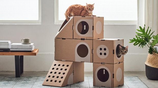 A Cat Thing (Foto: Reprodução/A Cat Thing)