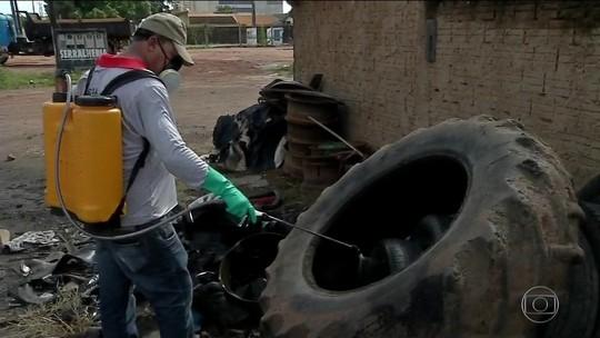 Casos de chikungunya mais que dobraram em 2017 em Cuiabá