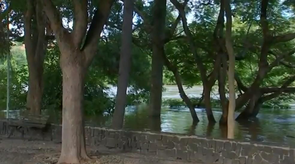 Nesta quarta-feira (12) o rio subiu 8 metros acima do nível normal em Tietê (SP) — Foto: Reprodução/TV TEM