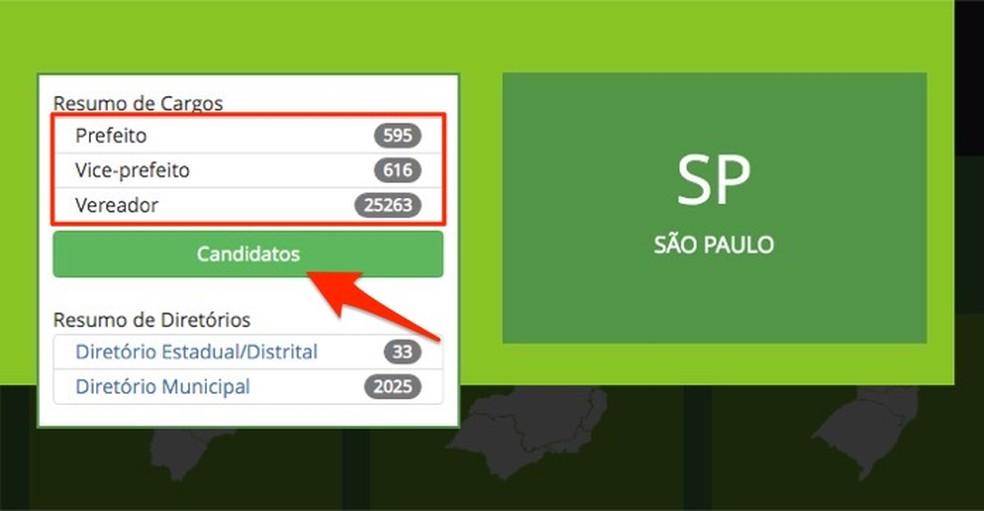 Dados totais sobre eleições em um estado brasileiro — Foto: Reprodução/Marvin Costa