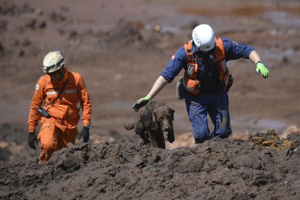 Bombeiros trabalham em contato direto com os rejeitos.  — Foto:  Mauro Pimentel/AFP