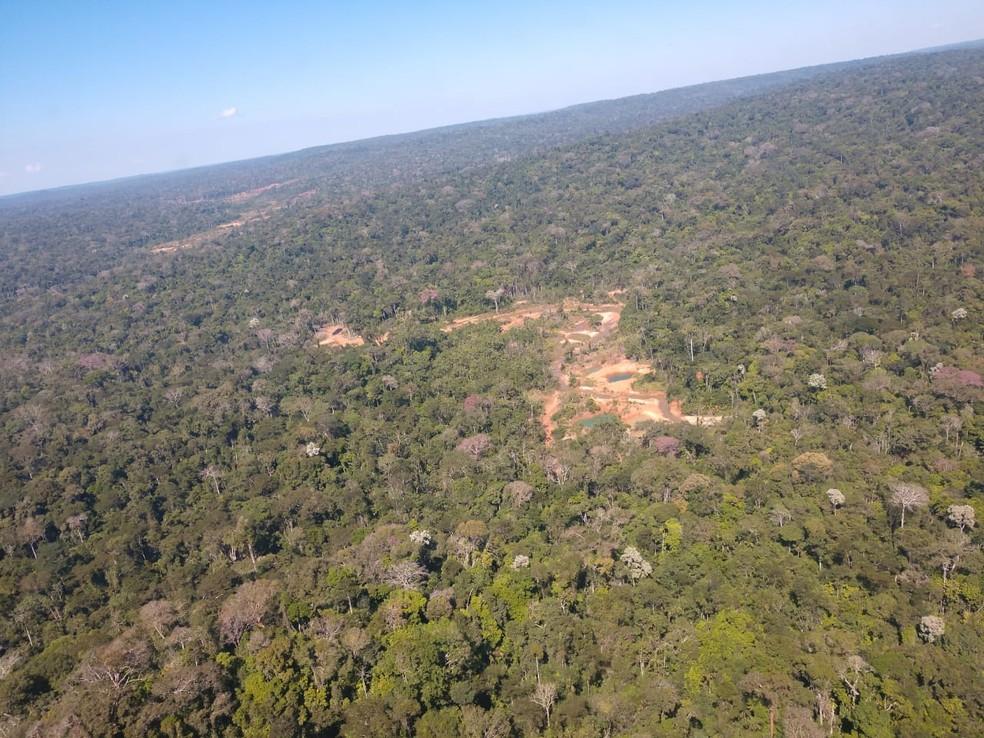 Área de garimpo é descoberta em floresta (Foto: DPF/Divulgação)