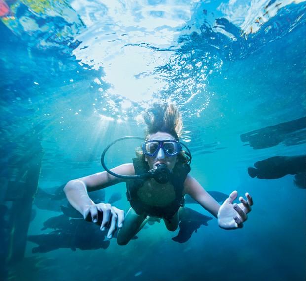 turismo mergulho (Foto: Divulgação)