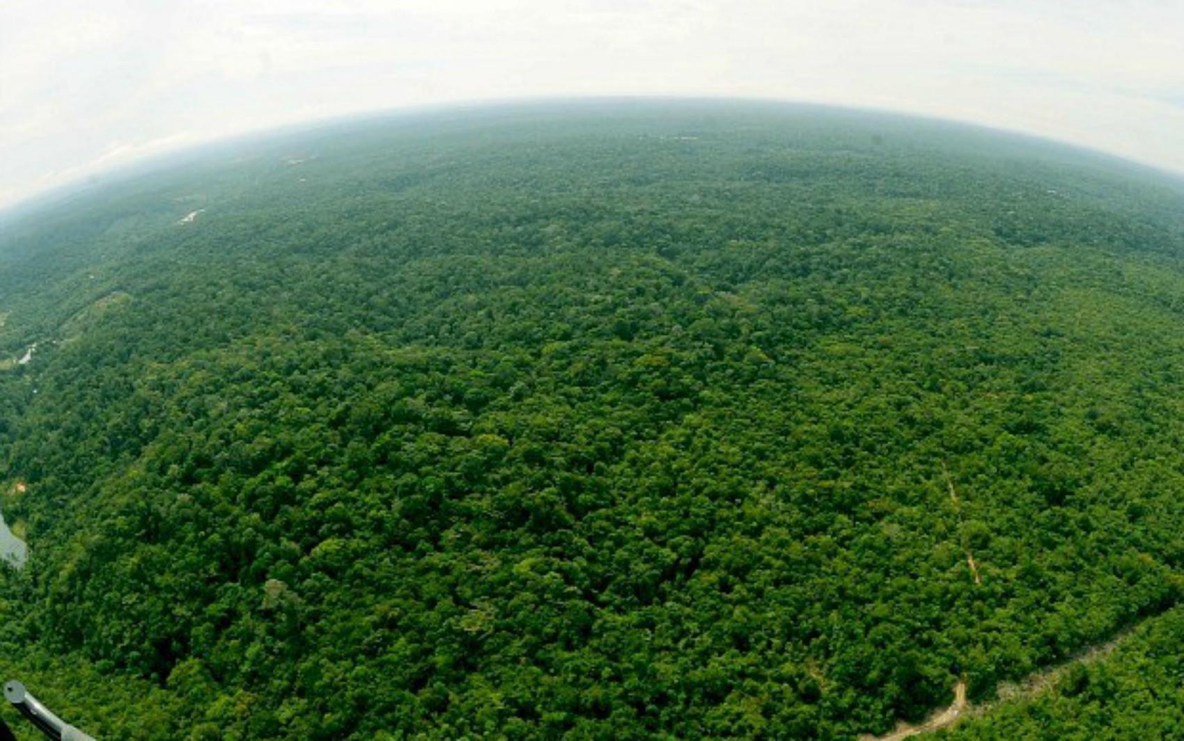 Bombeiros são acionados para busca por jovens perdidos na Reserva Adolpho Ducke, em Manaus