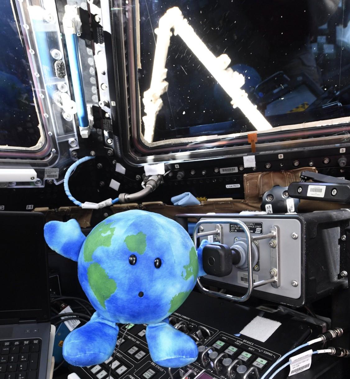A astronauta Anne McClain têm publicado diversas imagens ao lado de Earthie (Foto: NASA/ Anne McClain)