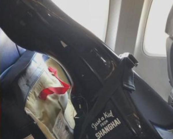 Artista foi impedida de viajar com violoncelo em voo (Foto: Reprodução/Facebook)