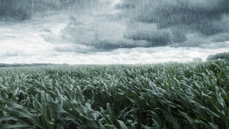 chuva imagem (Foto: Thinkstock)