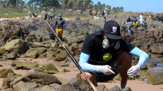 'O mar é minha vida, não posso ver esse horror e fazer nada': os voluntários na luta contra o óleo no Nordeste - Notícias - Plantão Diário
