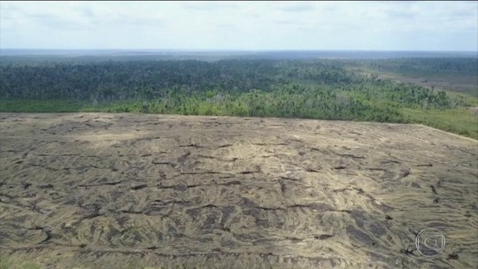 ONG Imazon registra avanço do desmatamento na Amazônia