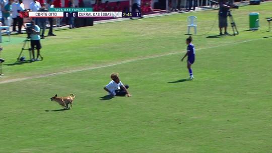Cachorro entra em campo e faz a festa na final da Taça das Favelas
