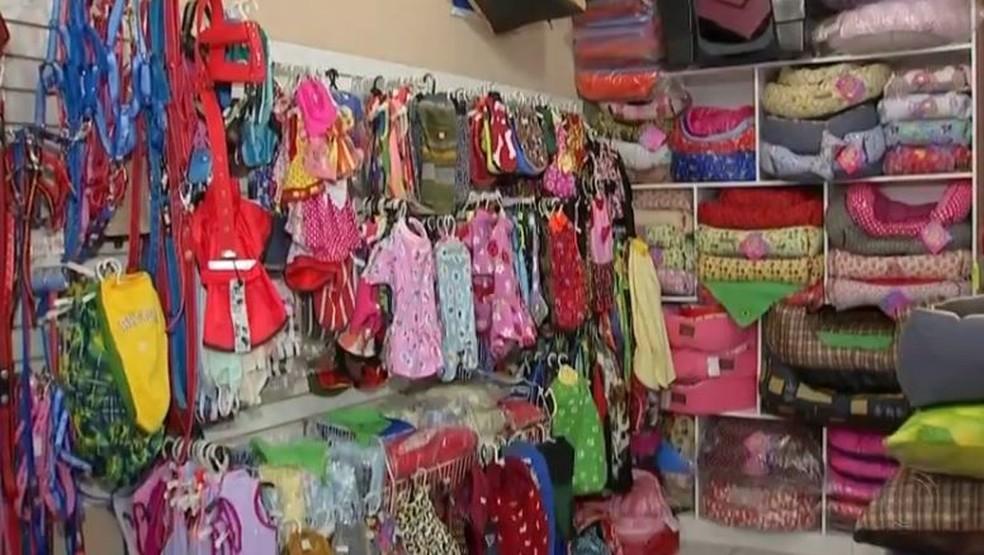 Pets shops investem em roupas para animais de estimação durante o frio (Foto: Reprodução/TV TEM)