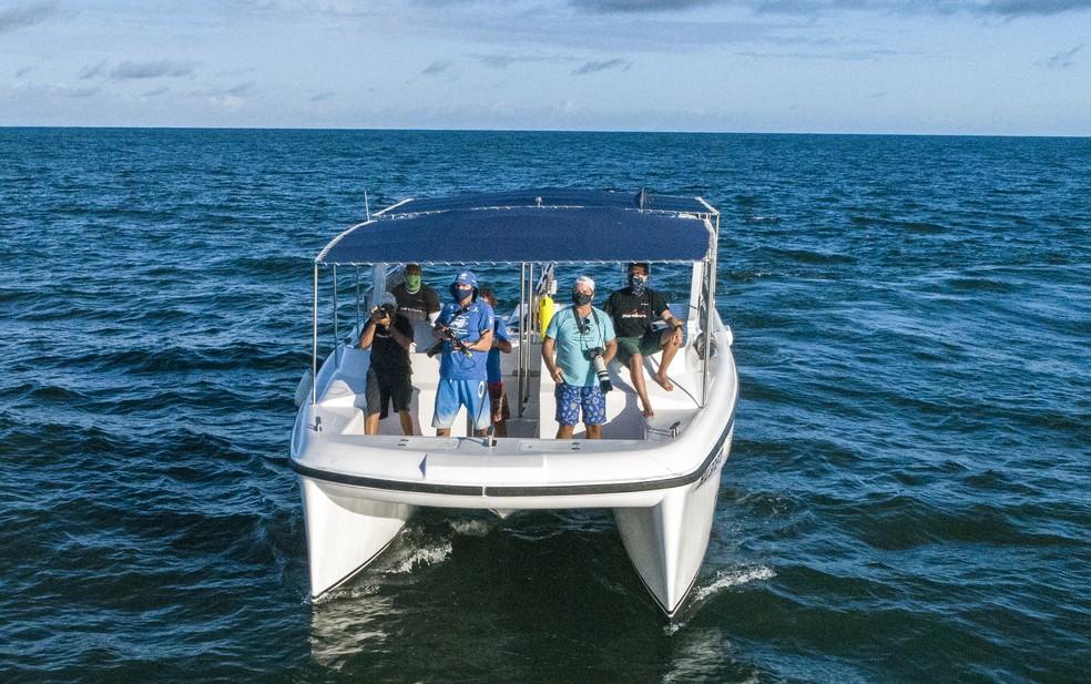 Pesquisadores do Projeto Baleia Jubarte durante monitoramento da espécie na Bahia — Foto: Projeto Baleia Jubarte/ Divulgação
