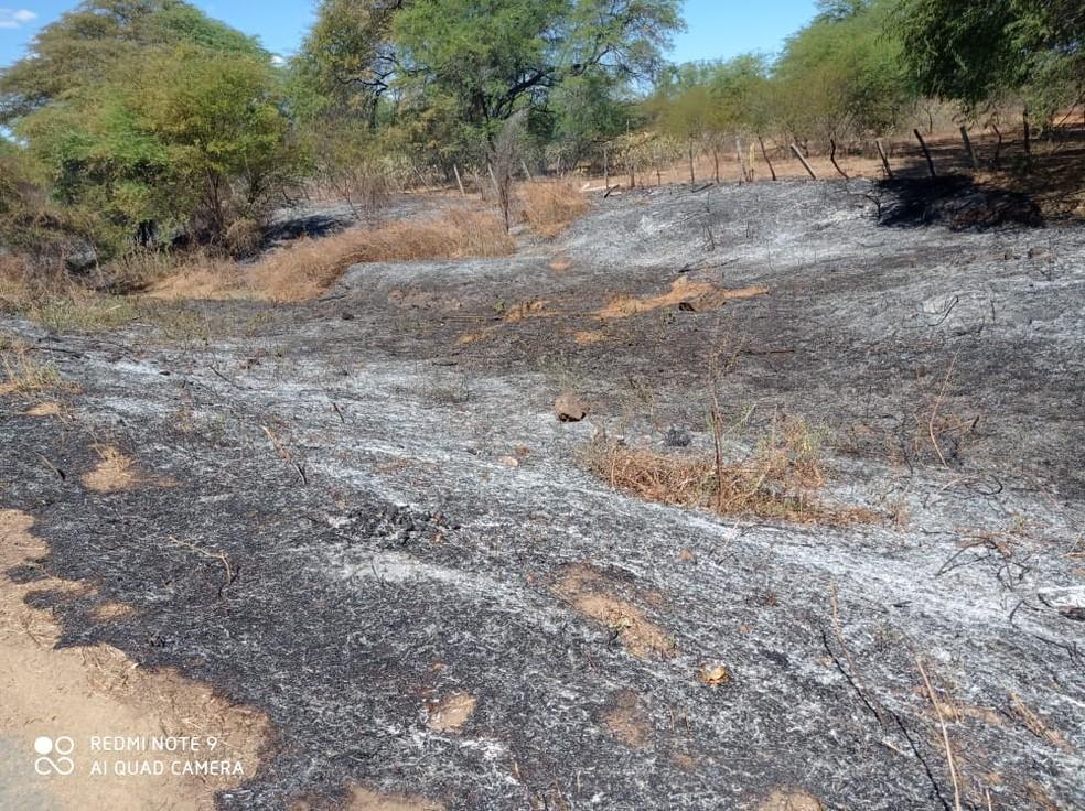 Equipe da secretaria de meio ambiente de Janduís levou mais de 1 hora pra controlar o fogo — Foto: Focoelho.com