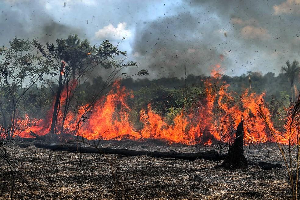Imagem registrada na terça-feira, dia 27, mostra queimadas em Santo Antônio do Matupi, no sul do Amazonas. — Foto: Gabriela Biló/Estadão Conteúdo