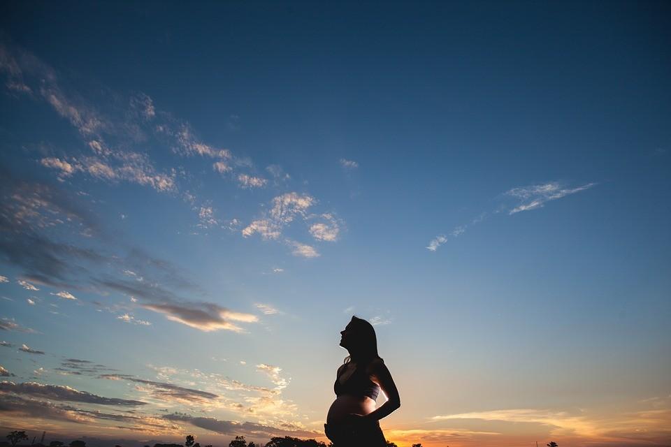 Grávida iria ao espaço de maneira voluntária para dar à luz (Foto: Pixabay/Jean Borges/Creative Commons)