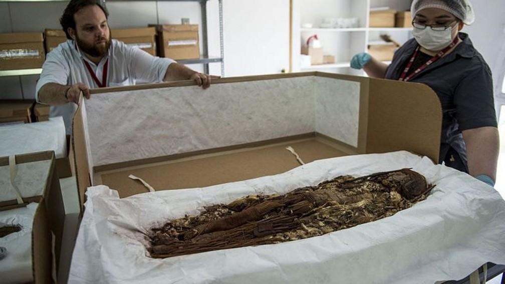 Até hoje foram analisadas cerca de 208 múmias — Foto: Getty Images via BBC