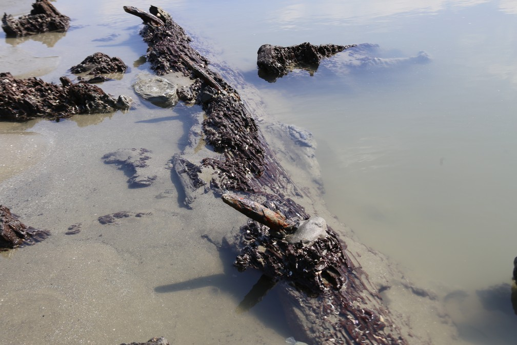 Ficas de mental nos destroços de navio são encontrados na praia do Embaré, em Santos, SP (Foto: José Claudio Pimentel/G1)