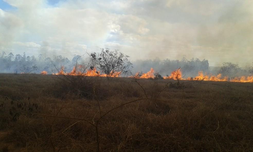 Incêndio na região sudoeste da Bahia — Foto: Edson Nunes/TV Sudoeste