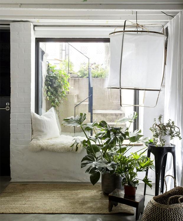Na entrada, um pequeno hall branco, decorado com plantas, recebe os moradores (Foto: Indecora/ Reprodução)