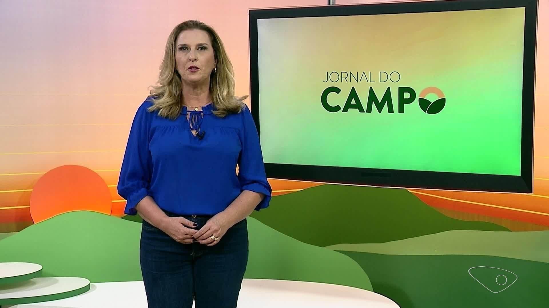 VÍDEO: Jornal do Campo ES de domingo,  17 de outubro de 2021