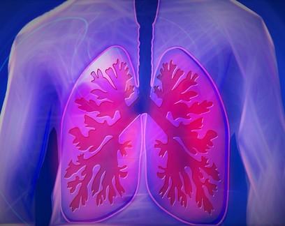 Método inovador permite salvar pulmões danificados antes de transplante
