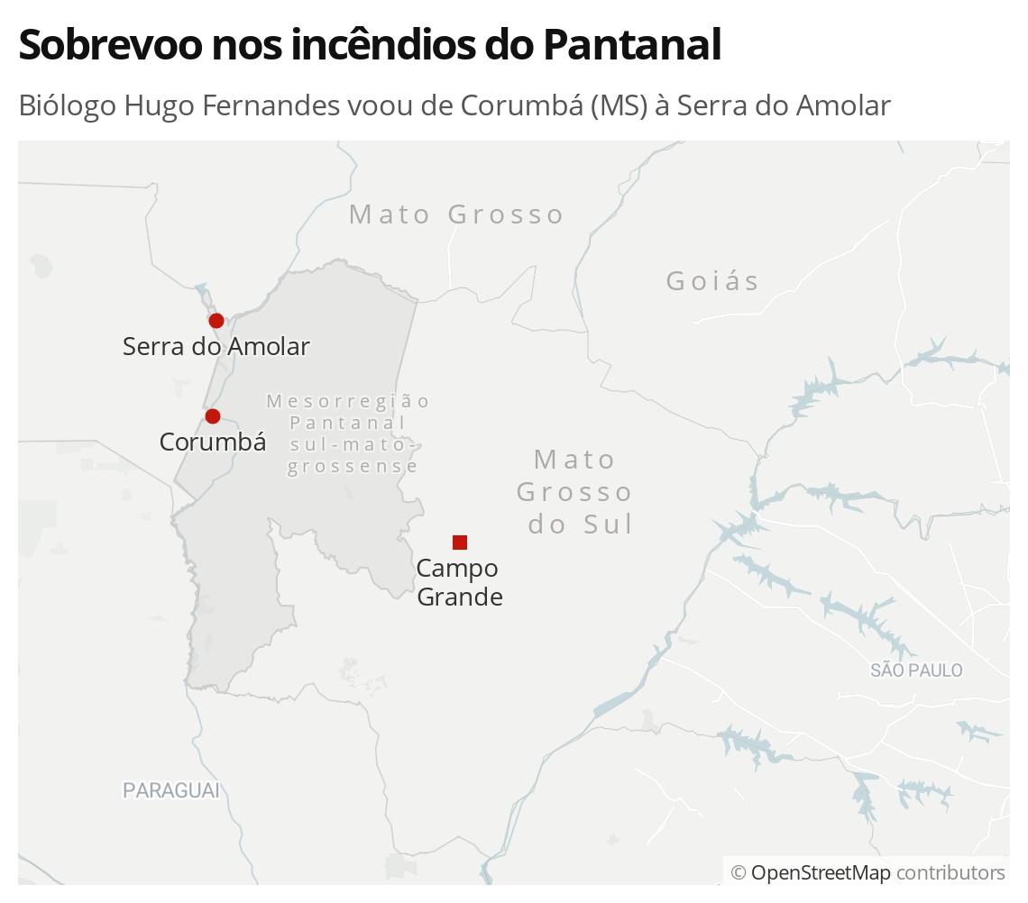 'A impressão foi que o inferno tinha subido', diz professor biólogo que fez sobrevoo em meio aos incêndios no Pantanal