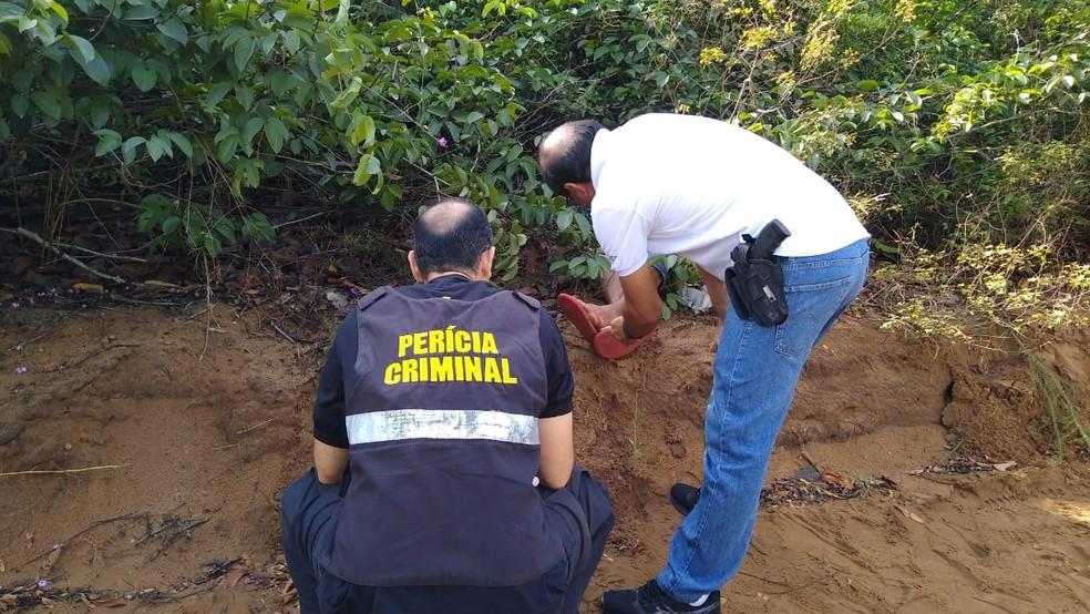 Equipes da Polícia Civil e IML estão no local onde o corpo foi encontrado — Foto: Maurício Rebouças/TV Tapajós