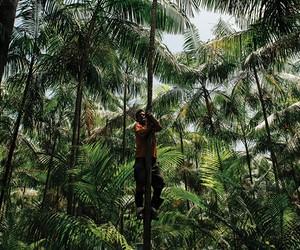 """Guilherme Leal: """"Ainda estamos olhando para a floresta da mesma maneira que há 500 anos"""""""