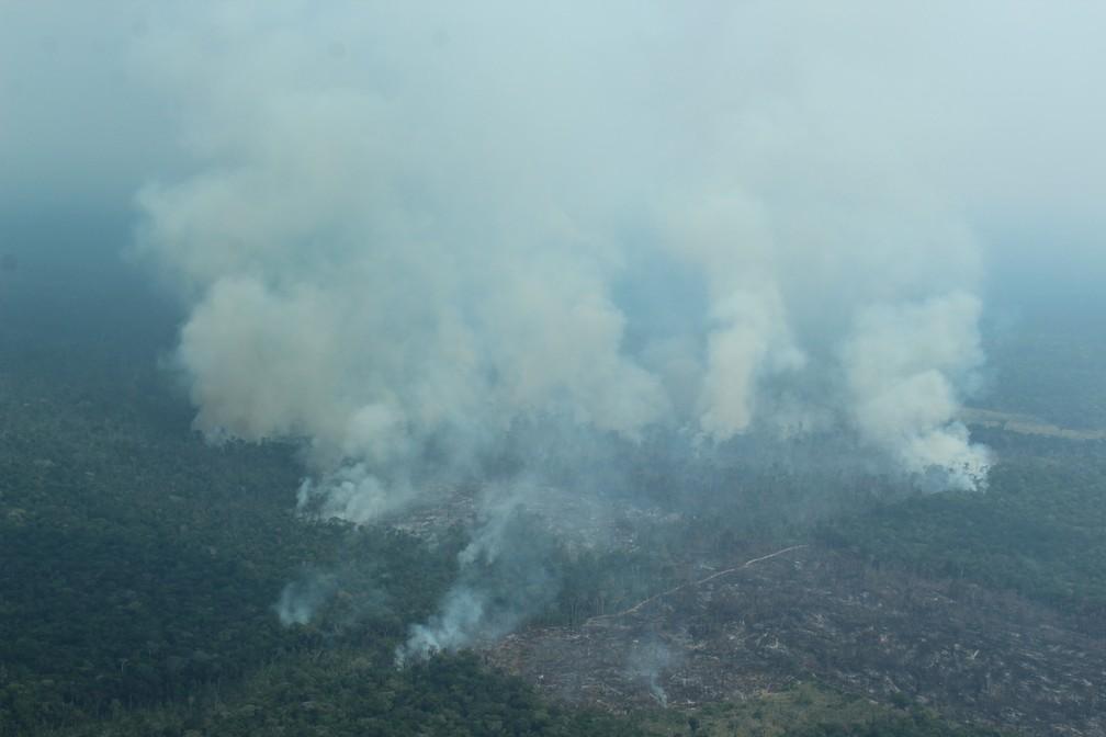 Queimadas atingem áreas de florestas derrubadas no Amazonas — Foto: Jonatas Boni/G1