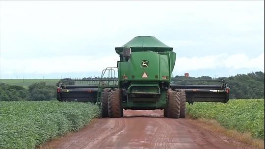 Produtores esperam fim da chuva para iniciar a colheita de soja em MT