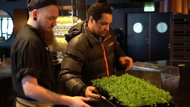Verduras e legumes são cultivados em uma estufa no verão e pequenos vegetais, durante os meses de inverno (Foto: BBC)