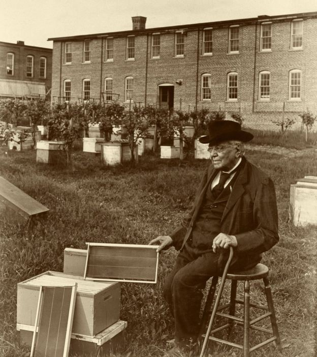 Lorenzo Langstroth com a colmeia que desenhou (Foto: SCIENCE PHOTO LIBRARY)