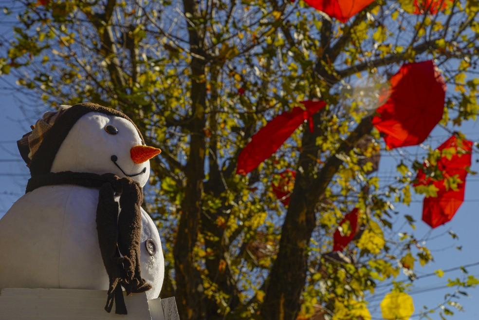 Canela (RS) decorada para a temporada de inverno de 2019. — Foto: Rafael Cavalli/SerraPress/Divulgação/Secretaria de Turismo de Canela