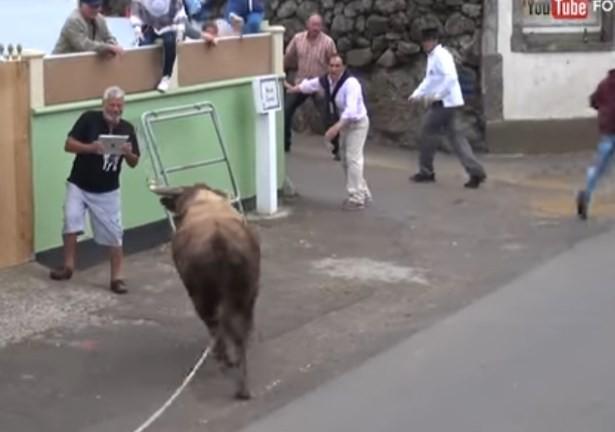 Homem desafia a sorte e encara touro com iPad