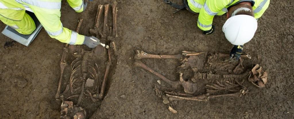 Os esqueletos encontrados têm as penas decepadas na altura dos joelhos (Foto:  Mola Headland Infrastructure)