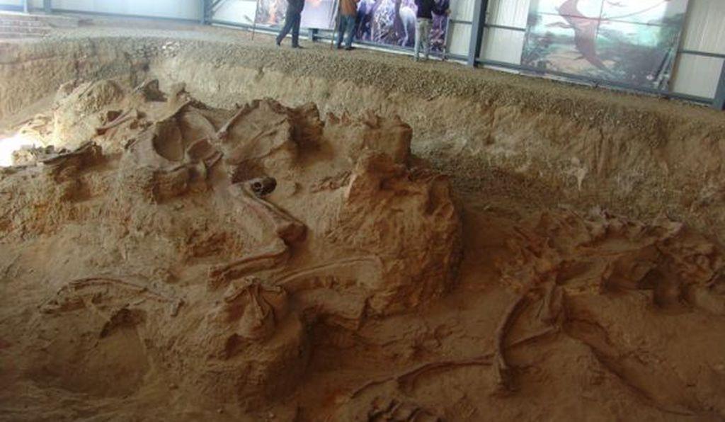 Escavações da nova espécie de dinossauro na cidade de Lingwu, na China  (Foto: Xu Xing)