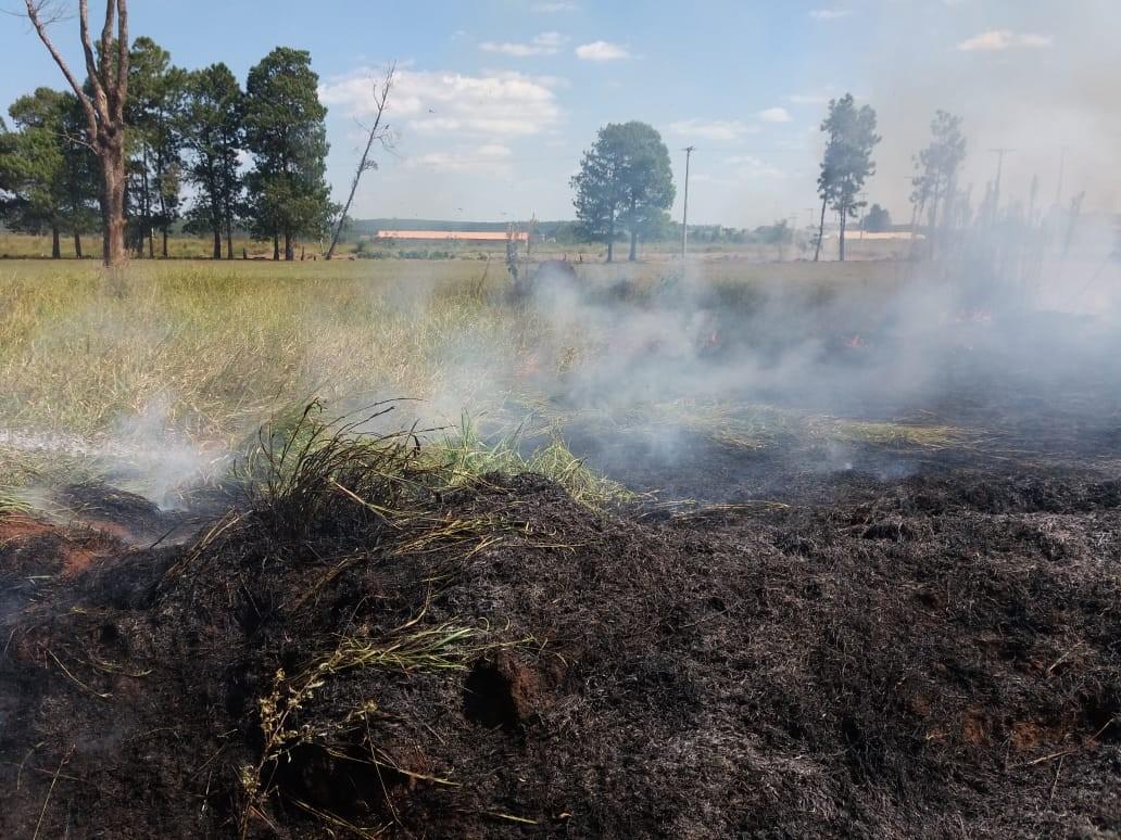 Bombeiros de Avaré atendem mais de dez ocorrências de fogo em mato no domingo