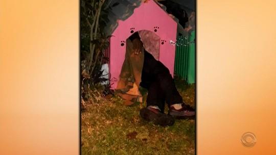 Abrigo é improvisado para morador de rua que dormia em casa de cachorro em Passo Fundo, mas prefeitura remove estrutura
