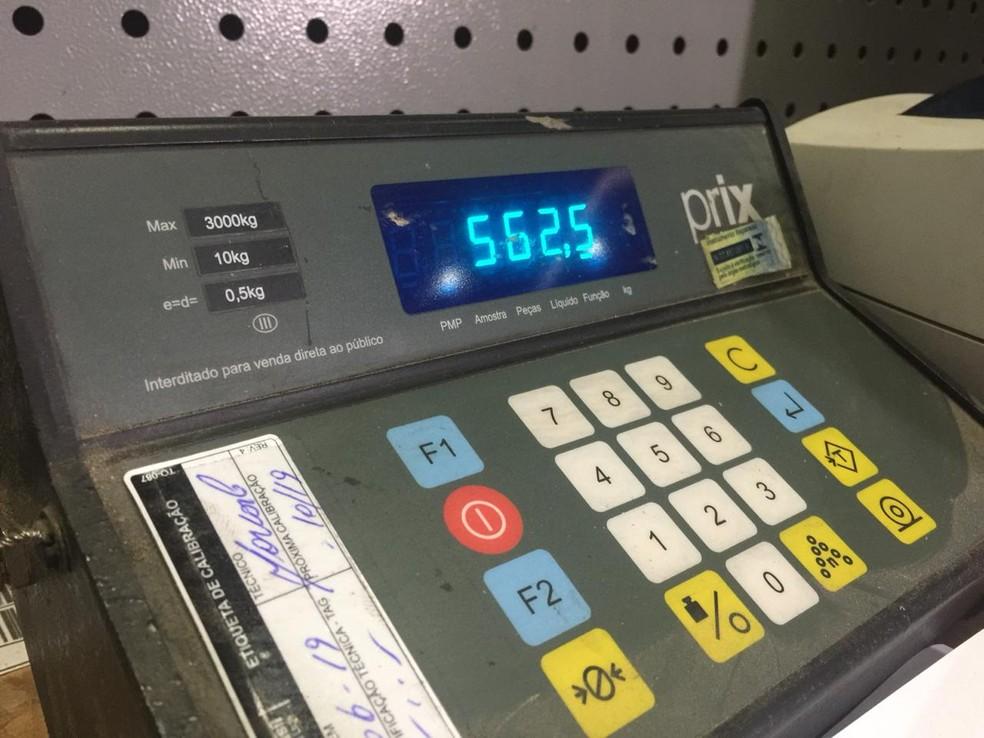 Droga foi flagrada por scanner em procedimento de rotina em Terminal de Contêiners de Paranaguá — Foto: Reprodução/RPC