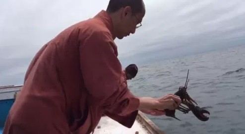 Monge devolve lagosta ao Atlântico