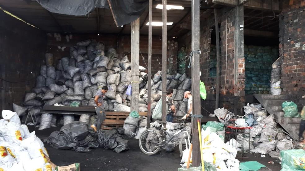 Sacos de carvão vegetal sem origem informada foram apreendidos durante operação em áreas de Mata Atlântica no estado — Foto: Ministério Público de Pernambuco/Divulgação