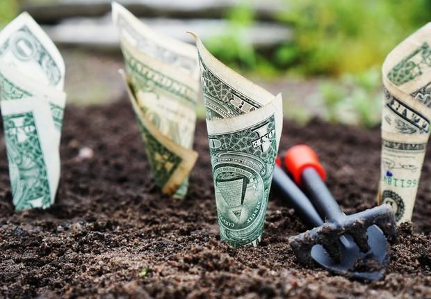 Importância do capital semente foi discutida durante evento da Quintessa  (Foto: Pexels)