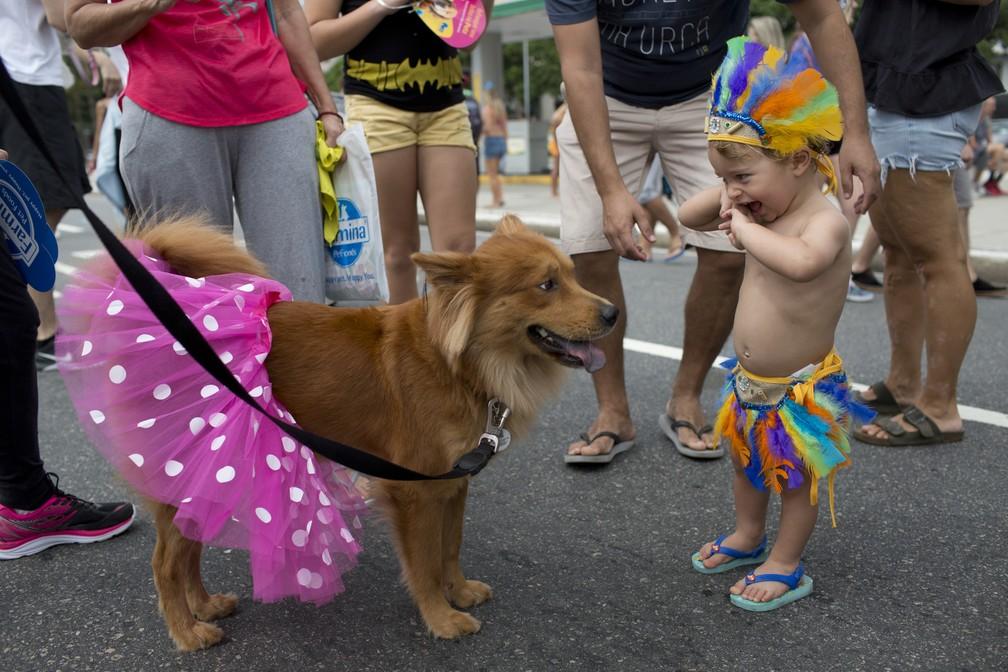 Criança brinca com cachorro em bloco no Rio (Foto: Silvia Izquierdo/AP)