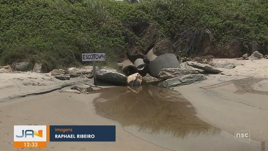Moradores instalam placas para sinalizar despejo irregular de esgoto em praia de São Francisco do Sul