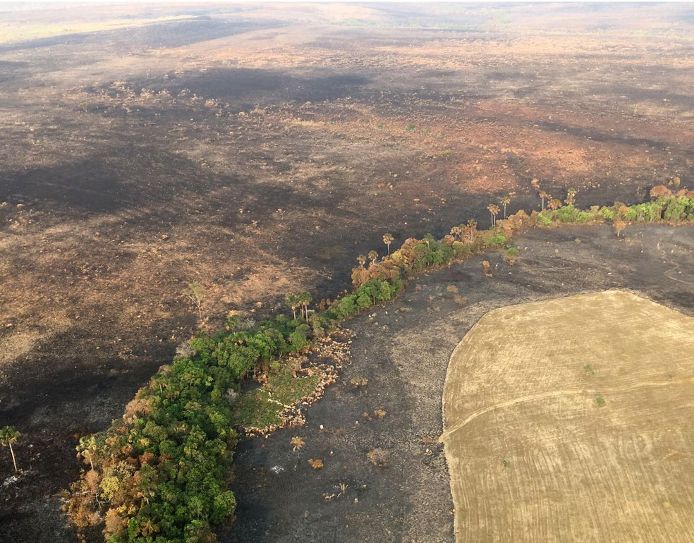 Incêndio na Chapada dos Veadeiros já destruiu mais de 64 mil hectares da unidade de conservação, segundo o ICMBio (Foto: Vitor Santana/G1)