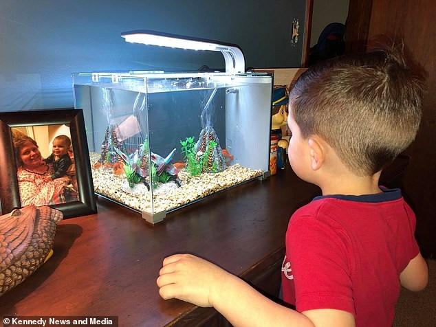 O menino adorava ver o peixe no aquário (Foto: Reprodução Facebook)