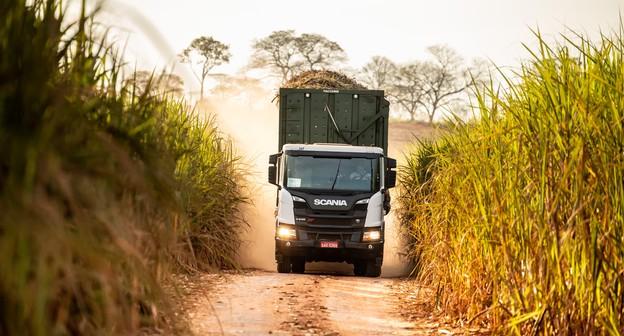 Pandemia acelera adoção de práticas de sustentabilidade na cadeia logística