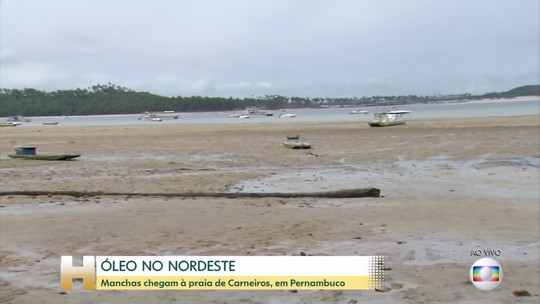 Federação internacional acionada pelo Ibama não encontra origem de manchas de óleo no Nordeste