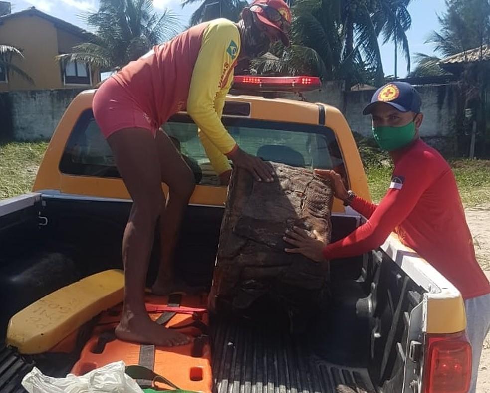 Fardo encontrado em praia de Ipojuca foi levado para análise — Foto: Pregfeitura de Ipojuca/ Divulgação