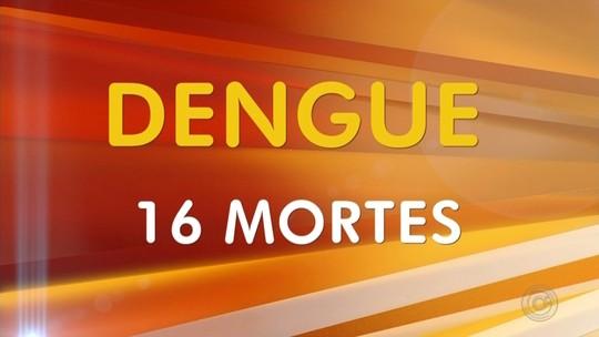 Noroeste paulista tem 16 mortes confirmadas por dengue neste ano